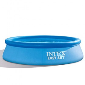 Intex 28120 Easy Set Swimming Pool, Blue