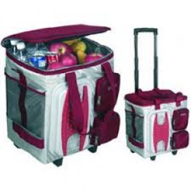 AUTO CARE COOLER BAG 12V 40L
