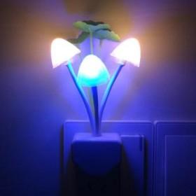 Avatar mushroom night light Lamp