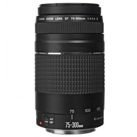 Canon EF 75-300mm F/4-5.6 III USM (NEW)