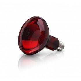 Beurer 614.51 100 watt Spare Bulb For Infrared Lamp